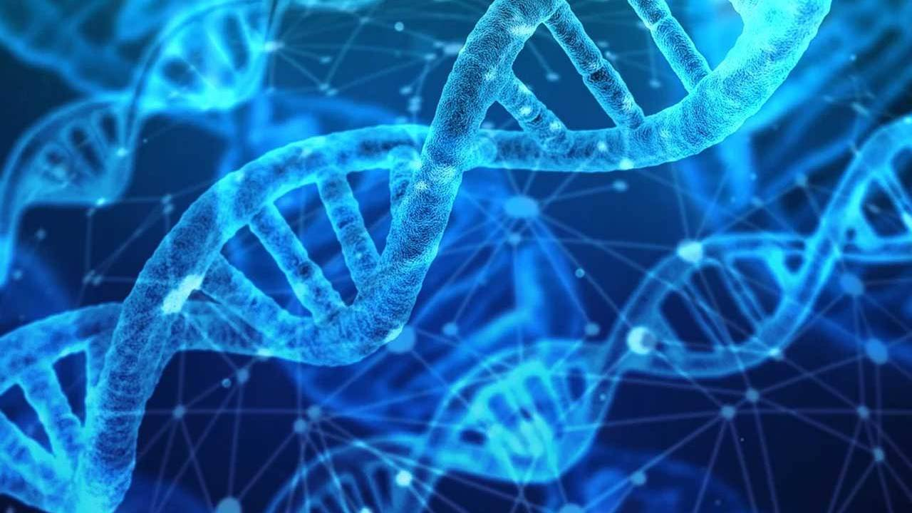 Researchers turn DNA functions on and off using light