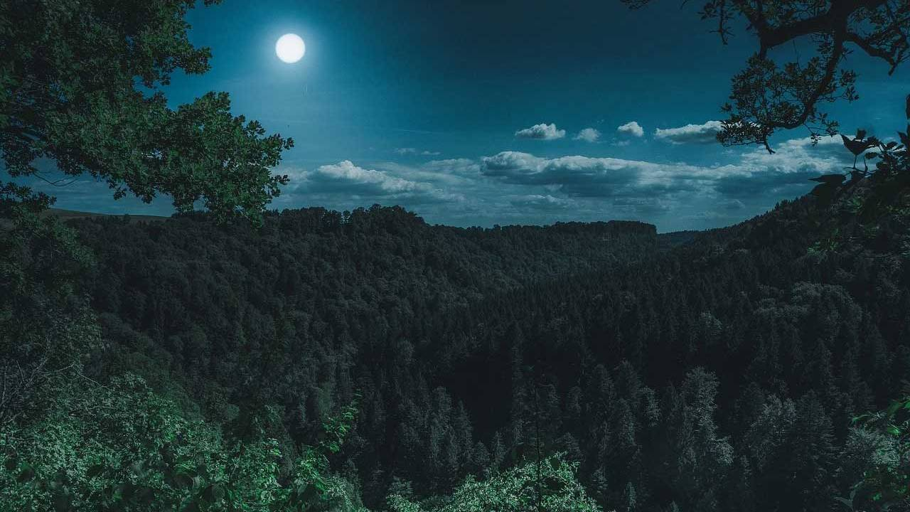 New study finds people go to bed later and sleep less on nights before a full moon