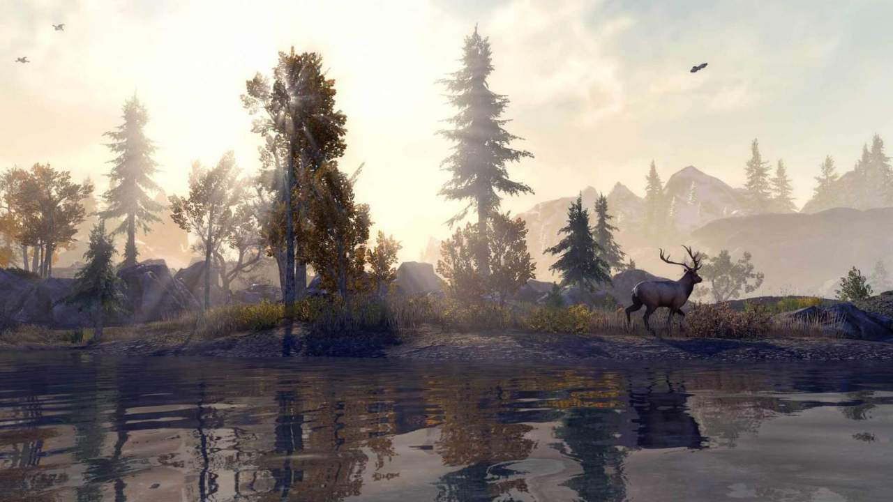 The Elder Scrolls Online Xbox Series X and PS5 next-gen upgrade dated and detailed