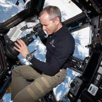 ISS astronauts take photographs to track bird migrations