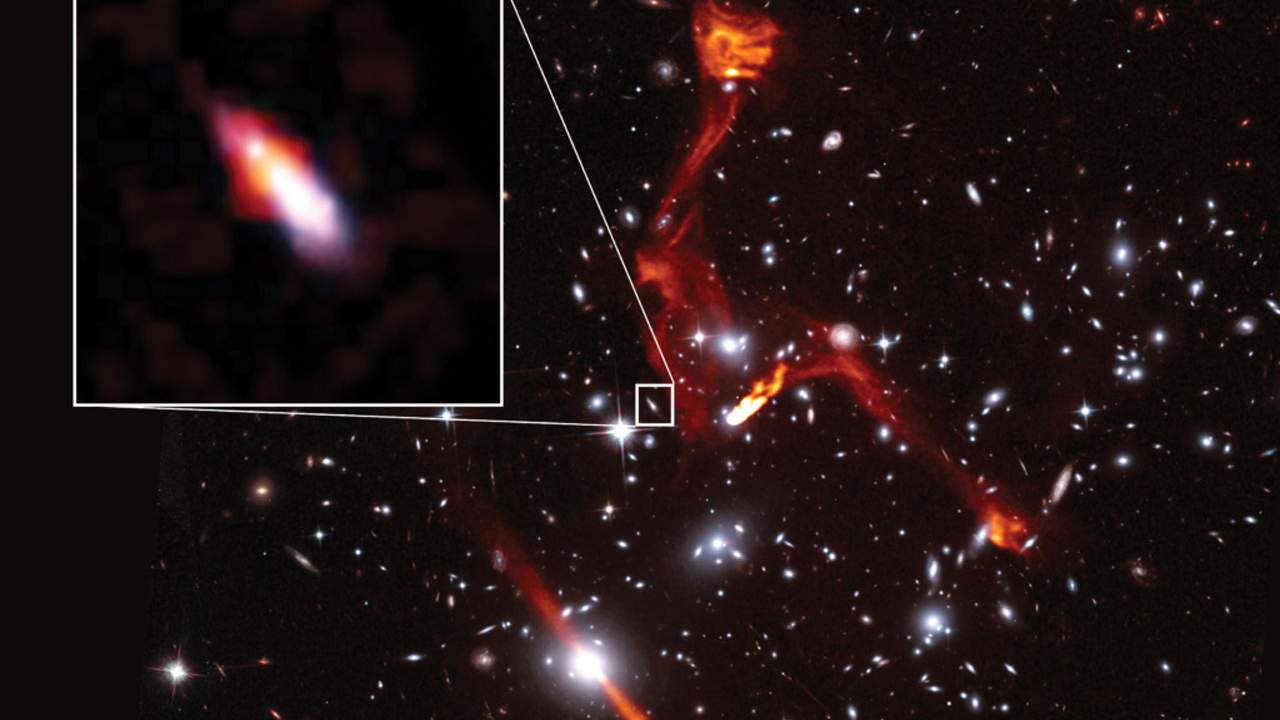 Astronomers use giant galaxy clusters as a lens to study distant radio galaxy