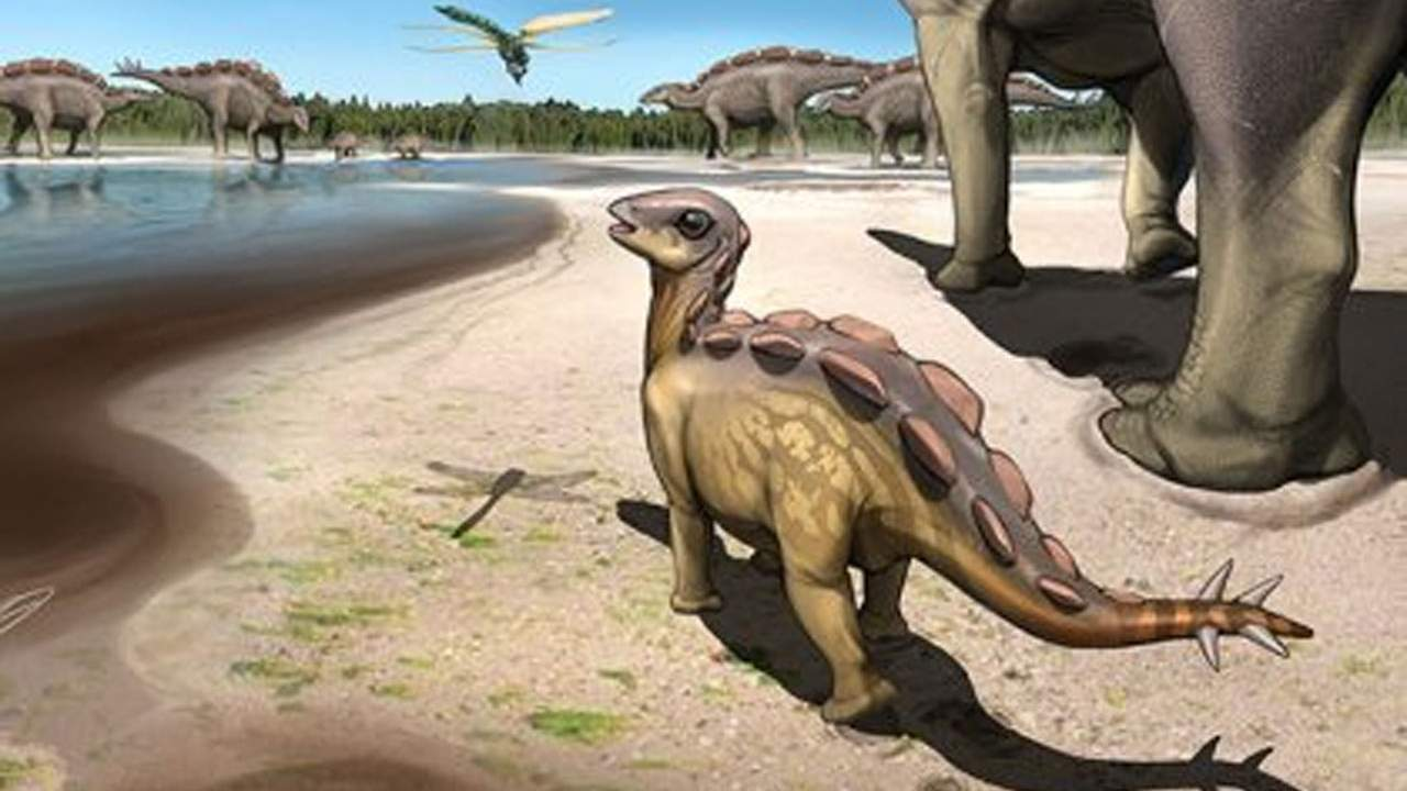 Paleontologists find a single footprint left by a cat-sized dinosaur
