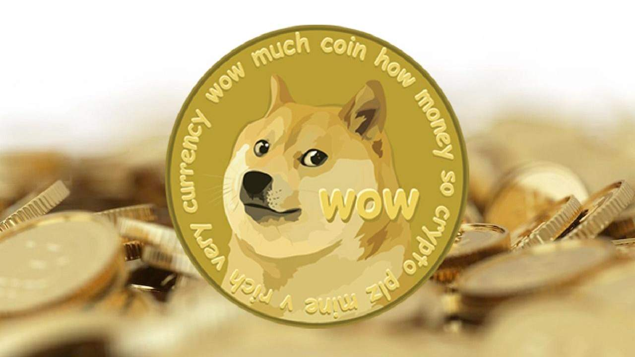 Dogecoin goes up and Robinhood goes down