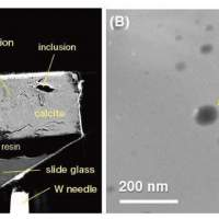 Researchers discover water inside a meteorite from the early solar system