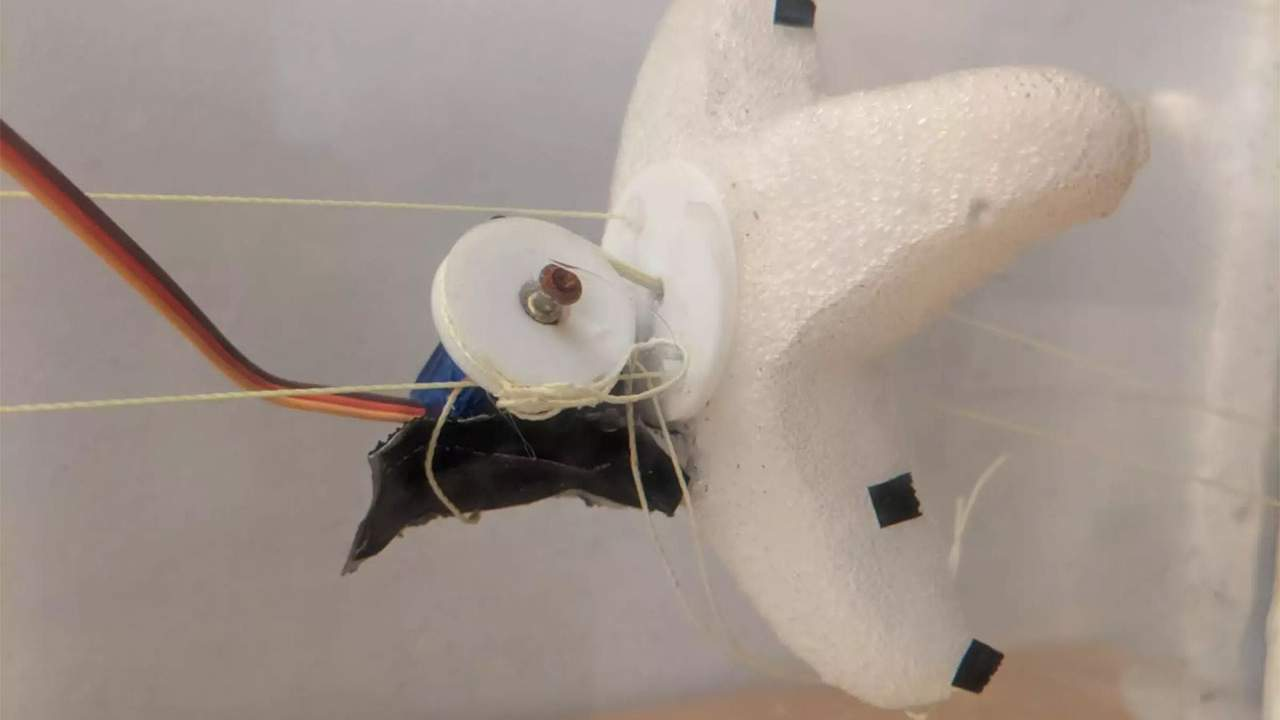 MIT rapid development system creates robot starfish in hours