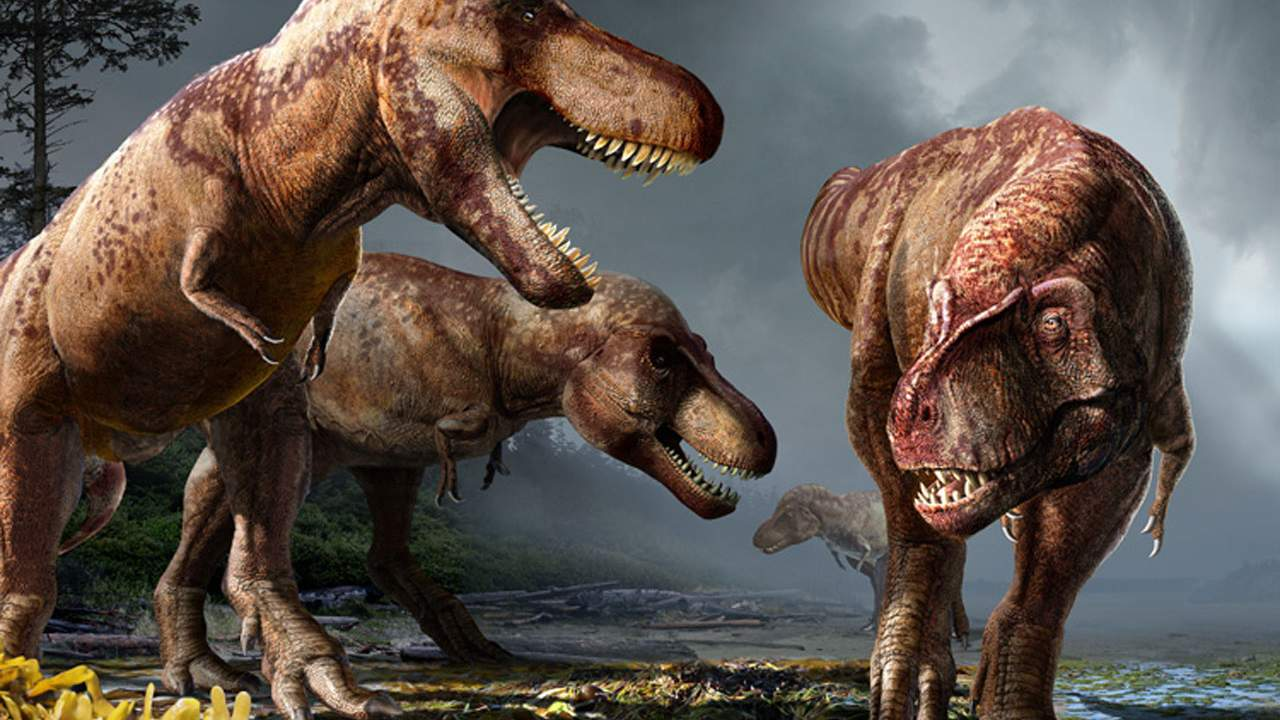 Study estimates North America was home to billions of T Rexes over its lifetime