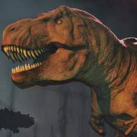 Study finds T-Rex likely walked slowly, but that didn't make it less scary