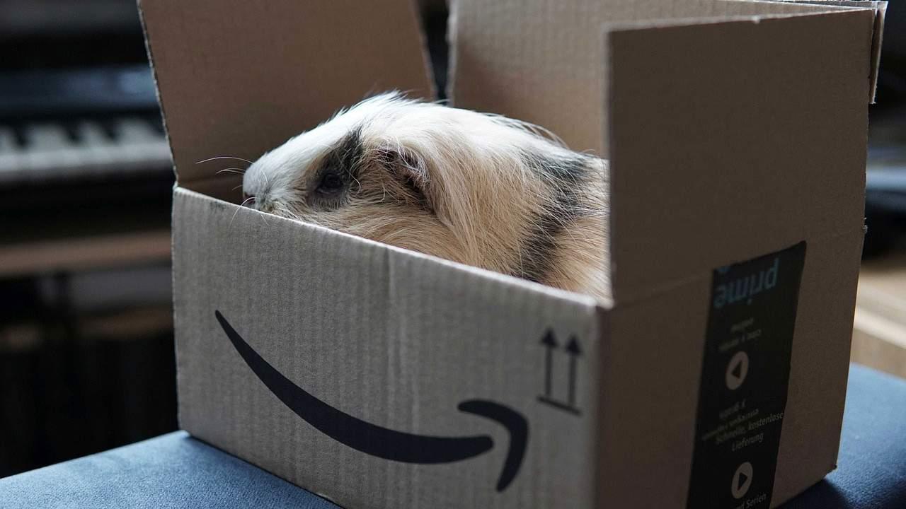 Rumor claims Amazon wants to buy movie studio MGM