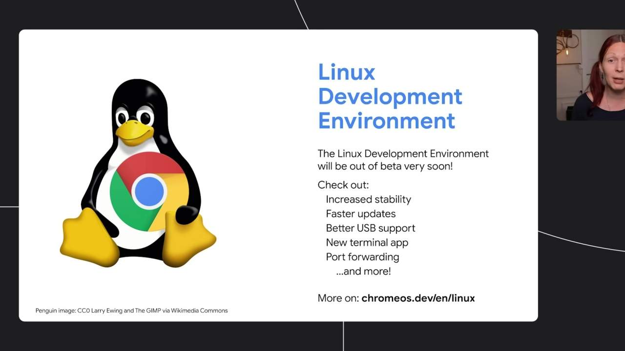Chromebooks Linux support is going out of beta soon