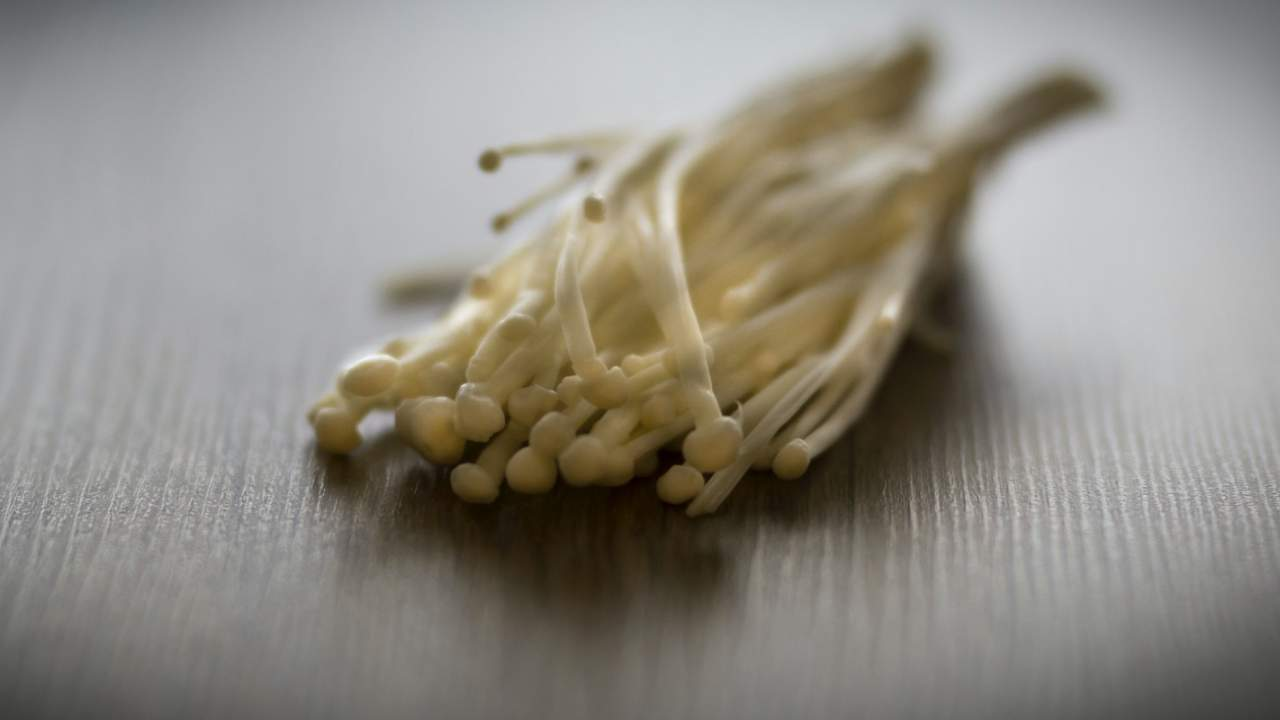 More mushrooms recalled over listeria risk: Here's what we know