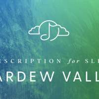 Stardew Valley game soundtrack gets soothing sleep lullabies cover