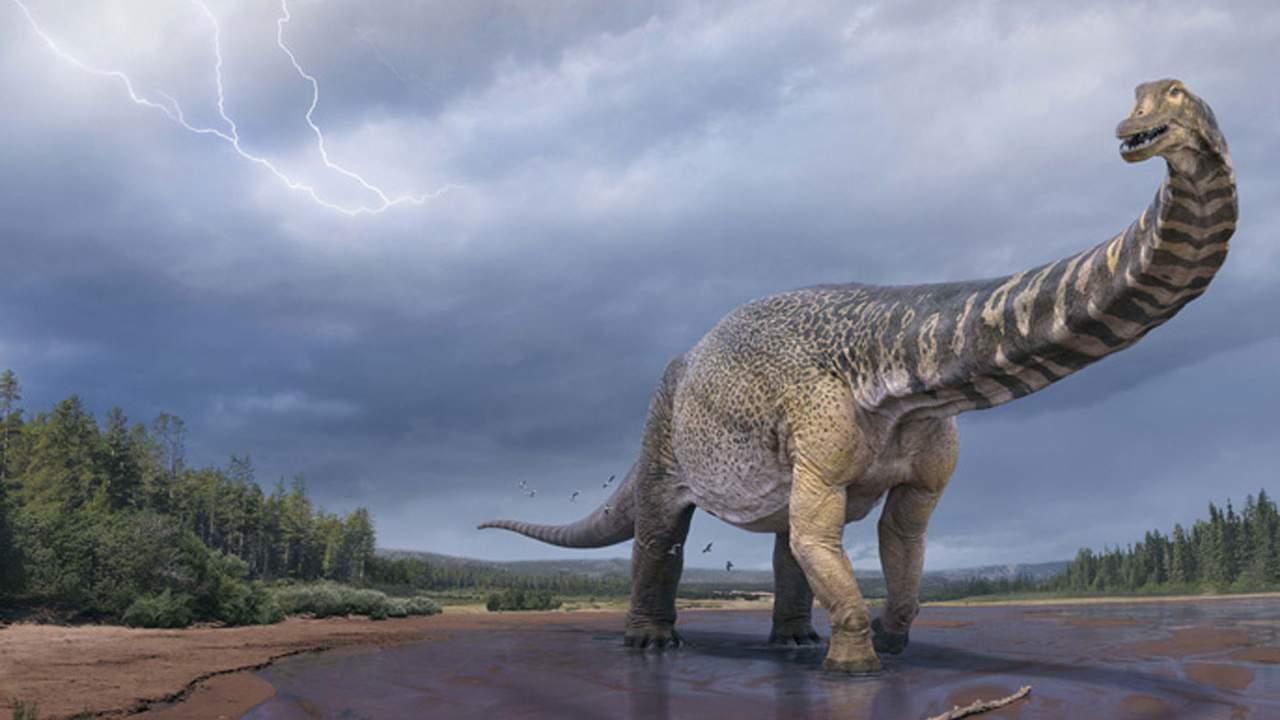 Scientists discover a massive new dinosaur in Australia