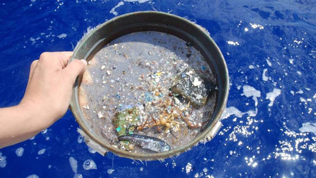 Researchers harness a NASA satellite to track microplastics in the Atlantic