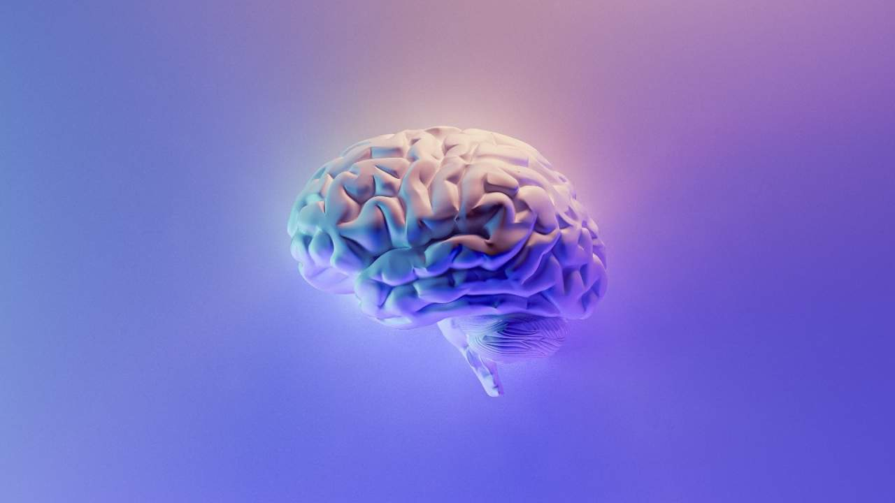 Virus treatment restores youthful memory in old mice and humans may be next