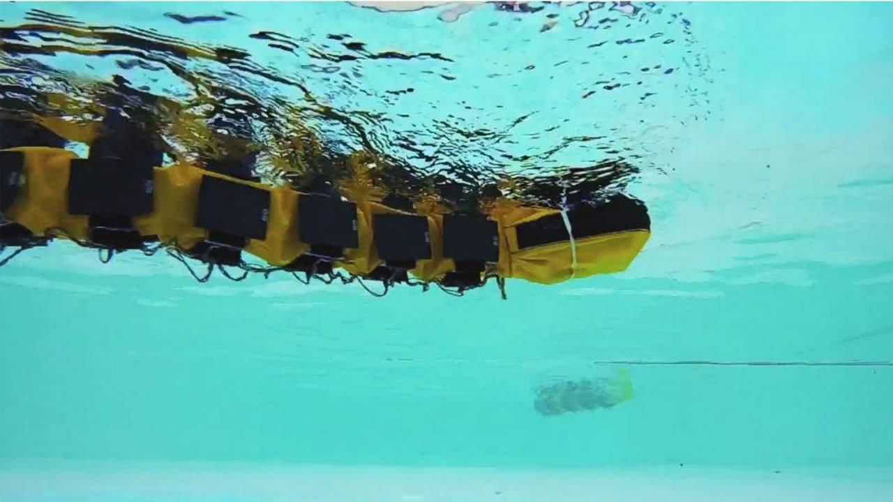 EPFL creates an eel-like swimming robot called AgnathaX