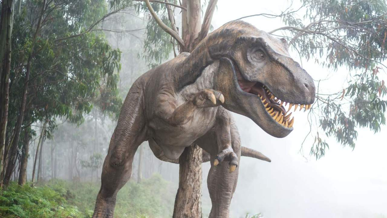 Jurassic Park may have got T-Rex table manners all wrong