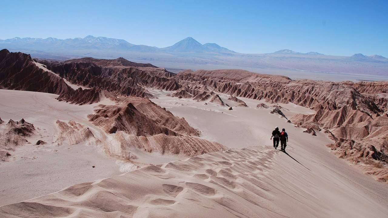 """""""Flying Dragon"""" pterosaur fossil discovered in the Atacama Desert"""