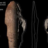 Archaeologists discover ancient bone tools for leathermaking