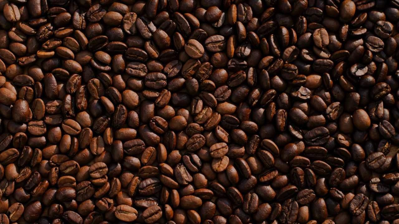 Lab-grown coffee utilizes bioreactors to increase sustainability