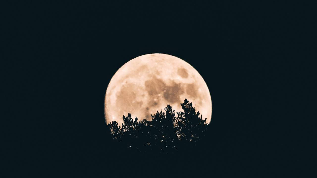 Lunar cycle may have a big impact on men's sleep quality