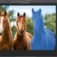 Photoshop update brings new Sensei AI features to desktop, Raw camera support to iPad
