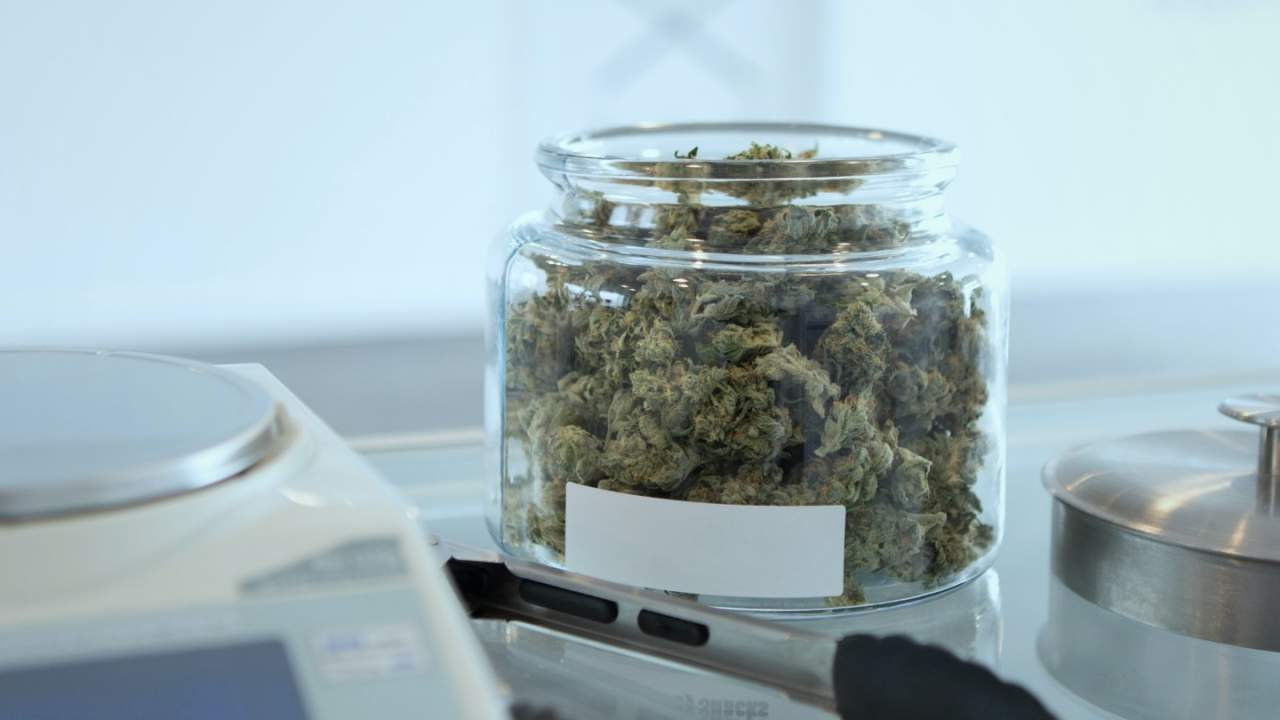 Cannabis 'mother' compound CBGA beats CBD at treating seizures