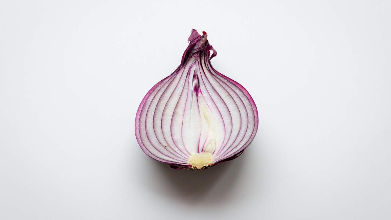 Hello Fresh and EveryPlate meal delivery services recall onions in kits